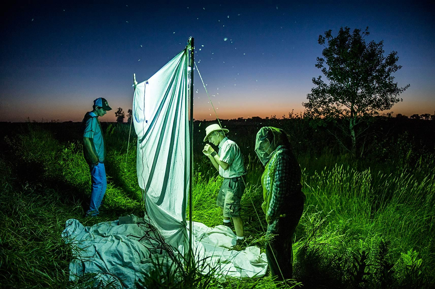 A photo of entomologists by Fargo, North Dakota editorial photographer Dan Koeck.