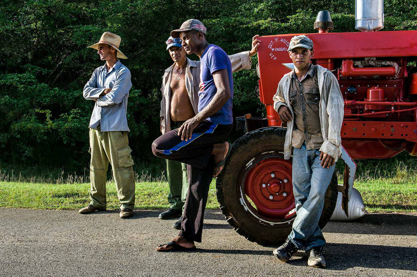 Cuban farm workers