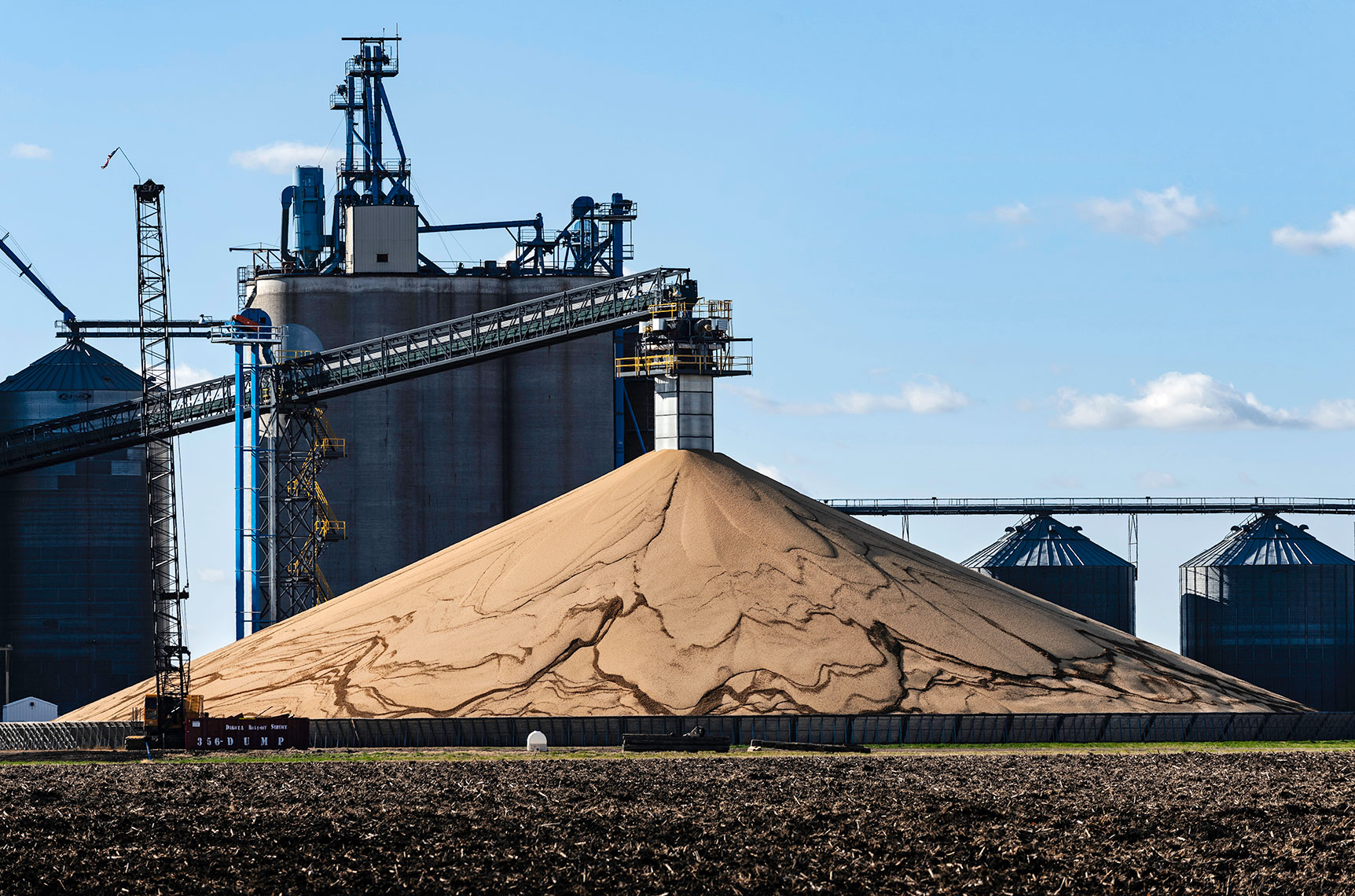 soybeans | Fargo photographer Dan Koeck | Editorial Photojournalism Commercial photography